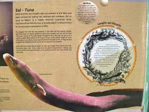 Lake Otuhie signage